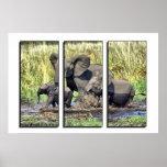 Triptych wildlife posters