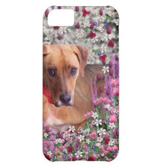 Trista in Flowers-9900x7200.jpg iPhone 5C Case