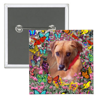 Trista the Rescue Dog in Butterflies Pinback Buttons