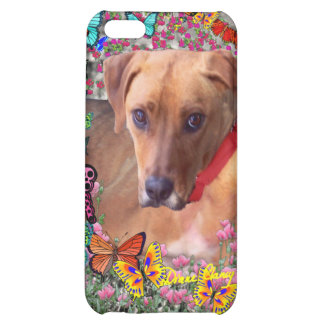 Trista the Rescue Dog in Butterflies iPhone 5C Covers