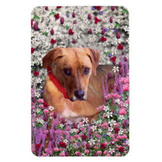 Trista the Rescue Dog in Flowers Rectangular Photo Magnet