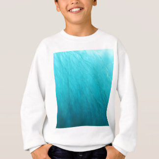 Troll Blue Sweatshirt