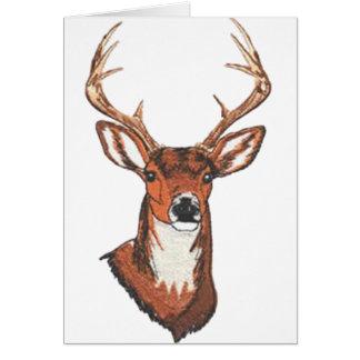 Trophy Buck Rack Mount Greeting Card