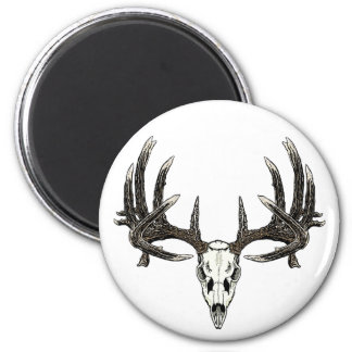 Trophy Whitetail buck 6 Cm Round Magnet