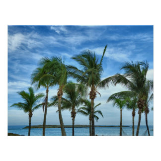 Tropical Afternoon Poster