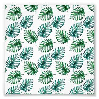 Tropical Aloha Monstera Leaves Pattern Photo Art