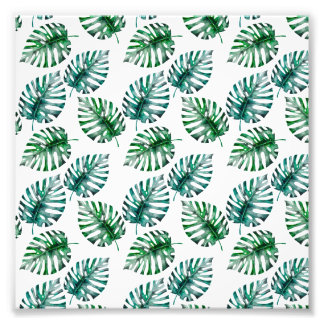 Tropical Aloha Monstera Leaves Pattern Photo Print