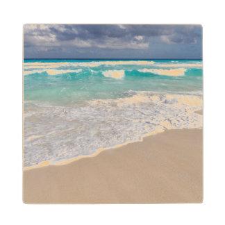 Tropical Beach and Sandy Beach Wood Coaster