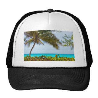 Tropical Beach Hats