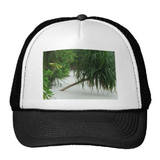 tropical beach in Asia Hats