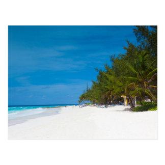 Tropical Beach in Barbados Postcard