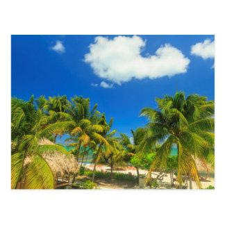 Tropical beach resort, Belize Postcard