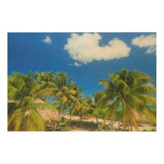 Tropical beach resort, Belize Wood Prints