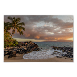 Tropical Beach Sunset with palm tree Poster