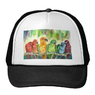 Tropical Birds Hats
