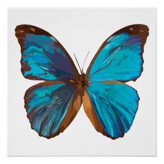 Tropical Blue and Turquoise Gem Butterfly Poster