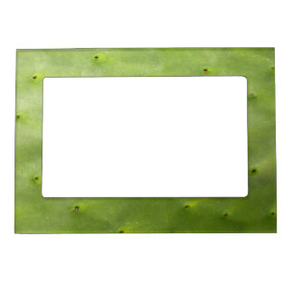 Tropical Botanical Green Cactus Photo Magnetic Picture Frame