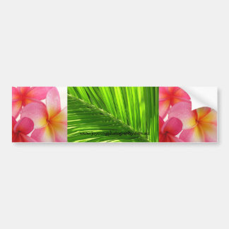Tropical Bumper Sticker