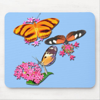 Tropical Butterflies Mouse Pad