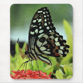 Tropical Butterfly Mousepad