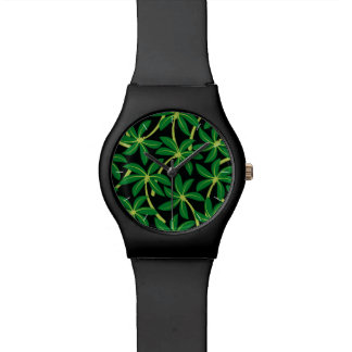 Tropical coconut palm tree watch