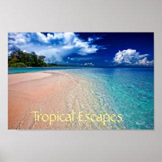 Tropical Escapes Poster