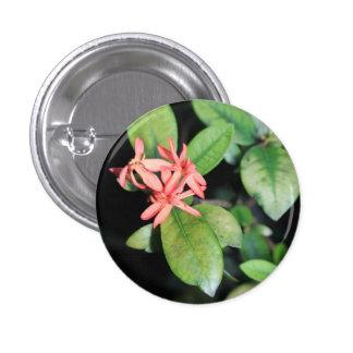 Tropical Exotic Coral Flower, Kew Gardens Badge