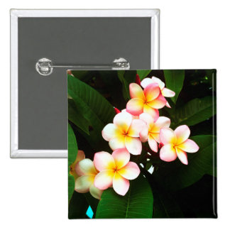 Tropical Exotic Frangipani Flower 15 Cm Square Badge