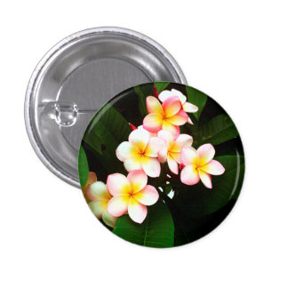 Tropical Exotic Frangipani Flower 3 Cm Round Badge