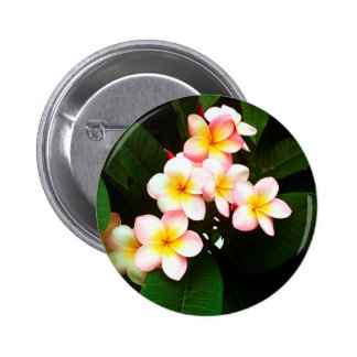 Tropical Exotic Frangipani Flower 6 Cm Round Badge