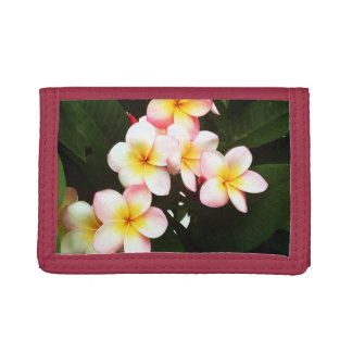 Tropical Exotic Frangipani Flower Trifold Wallet