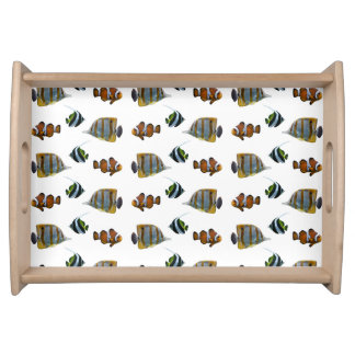 Tropical Fish Frenzy Tray (choose colour)
