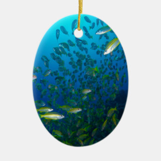 Tropical Fish Great Barrier Reef Coral Sea Ceramic Oval Decoration