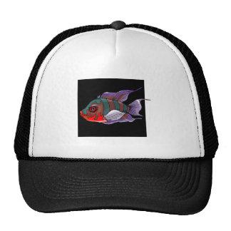 Tropical Fish Mesh Hats