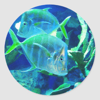 Tropical Fish in Turquoise and Chartreuse Round Sticker