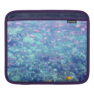 Tropical Fish iPad Sleeve