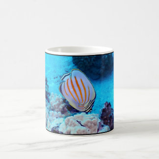 Tropical Fish Coffee Mugs