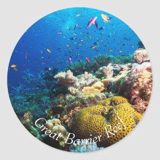 Tropical Fish on the Great Barrier Reef Round Sticker