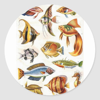 Tropical Fishes Classic Round Sticker