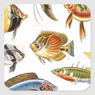 Tropical Fishes Square Sticker