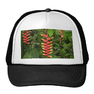 tropical flower hats