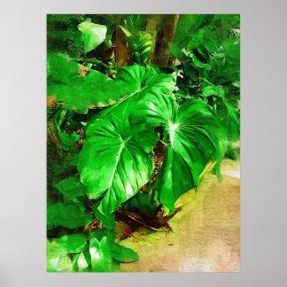tropical foliage, fairchild tropical gardens, miam poster