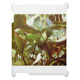Tropical Garden Case For The iPad 2 3 4