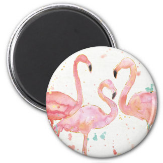 Tropical | Gathering of Flamingos Magnet