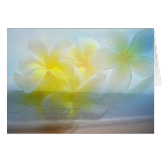 Tropical Haven Beach / Frangipani Card