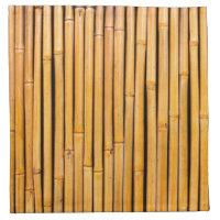 Tropical Hawaiian Bamboo Background Template