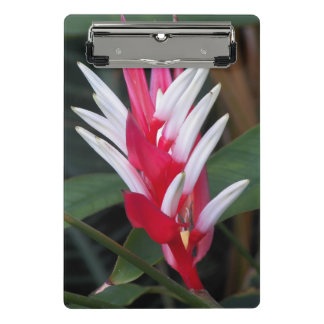 Tropical Heliconia Floral Mini Clipboard