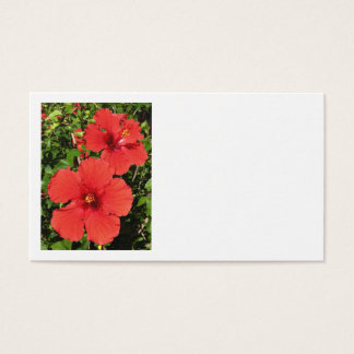 Tropical Hibiscus Business Card