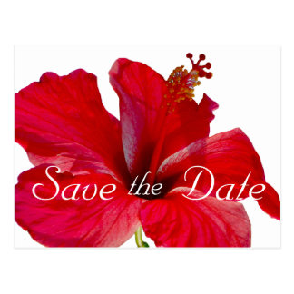 Tropical Hibiscus Wedding Save the Date Postcard