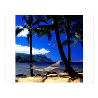 Tropical Island Afternoon Nap Kauai Hawaii Postcard